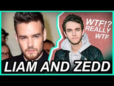 LIAM PAYNE AND ZEDD? NIALL HORAN AND SHAWN? • One Direction News
