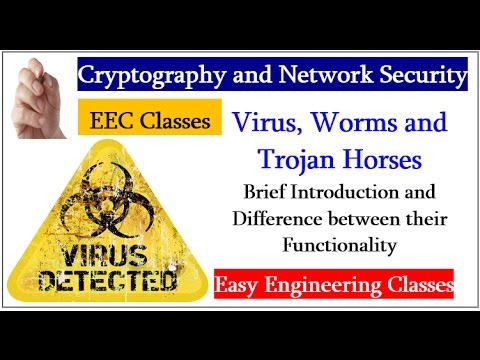 difference between a virus and a trojan essay Difference between malware and virus and trojan horses difference between antivirus and internet security difference between norton antivirus 2011 and.