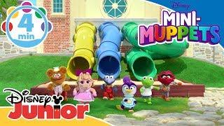 Mini-Muppets | Musik: Sange fra sæson 1! 🎶- Disney Junior Danmark