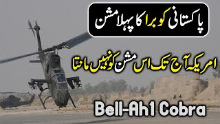 Pakistani Cobra