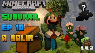 Minecraft PSP | Survival | Episodio 10 | A salir | Loquendo | HD | luigi2498