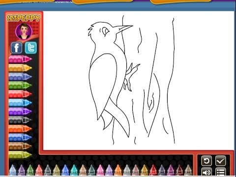Birds Coloring Pages For Kids - Birds Coloring Pages - YouTube