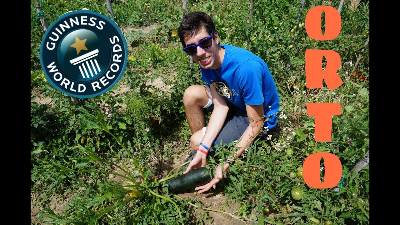 Guinness world record la zucchina piu 39 grande del mondo for La zucchina