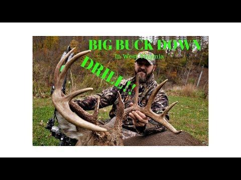 Big WV 10 Point Taken Down By Perry Bailey! #deerhunting #bowhunting #WestVirginia