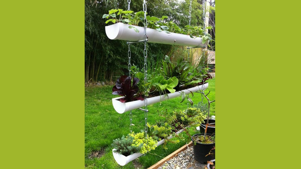 13 Great Ideas for a Vertical Garden