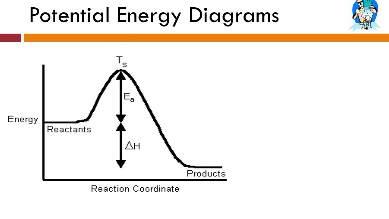 9 3 - Potential Energy Diagrams