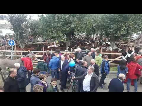 Gran afluencia de gente en el último fin de semana de As San Lucas
