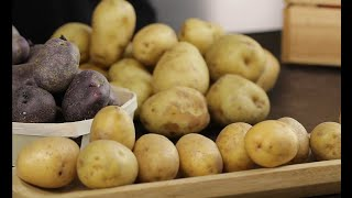 """""""Ziemniaki czy kartofle?"""" – Fakty i mity o ziemniaku"""