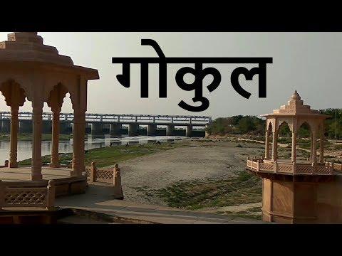 Gokul Vlog