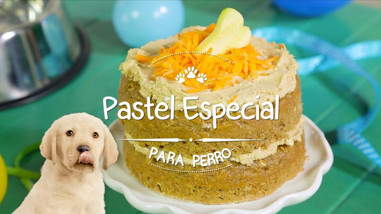 Pastel Especial Para Perro