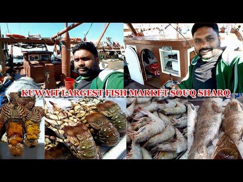 Kuwait Largest Fish Market Souq Sharq | Ms Raju Vlogs |