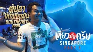 เที่ยวมั้ยครับ-ep-10-ไปดูตู้ปลายักษ์ที่ใหญ่ที่สุดใน-southeast-asia-ที่สิงคโปร์-part-3-3
