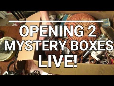 Auction Day! Opening 2 Mystery Boxes and Scrap Yard Cash!