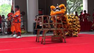 Telok Kurau Pri Sch A team_ 8th NTU Lion Dance Competition.MTS