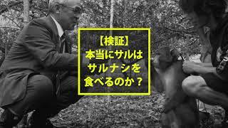 ふくしまの元気!応援CM大賞2017福島県知事賞受賞作品 未来(あす)が輝...