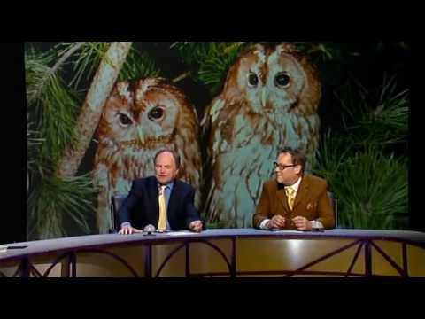 QI 4x02 - Clive Anderson, Arthur Smith, Vic Reeves.avi