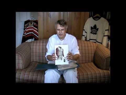 Georgia Bulldogs art and uniform history