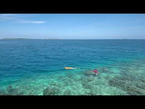 Summer Shade Maldives. cheap Hotel/ Guest house in Dharavandhoo