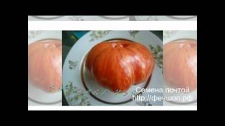 Семена помидоров почтой  Акция!(, 2015-10-09T19:43:36.000Z)