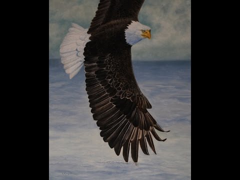 How to Paint a Flying Eagle in Oils or Acrylic