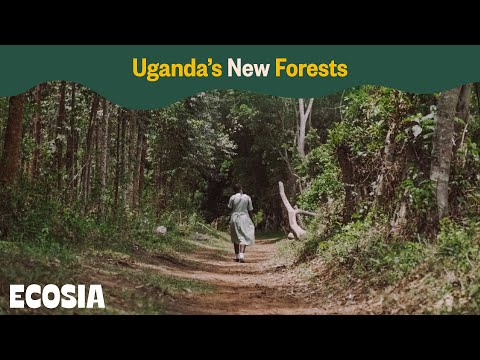 Uganda's New Forests
