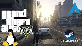 Grand Theft Auto V - Steam Play | Gameplay