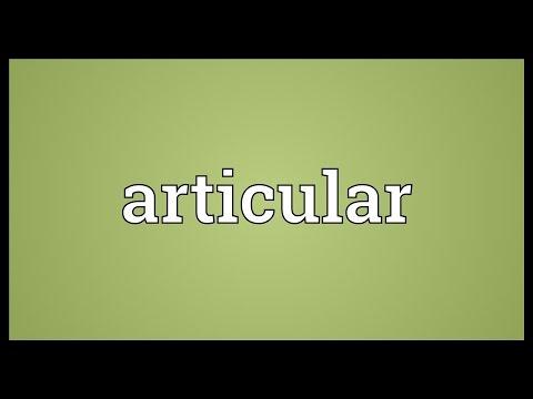 Header of articular