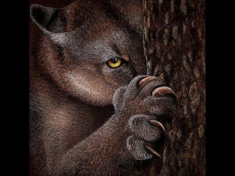 Wild Cat by LeopARTnik