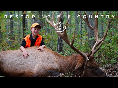 Restoring Elk Country - Bearcat Hollow Arkansas