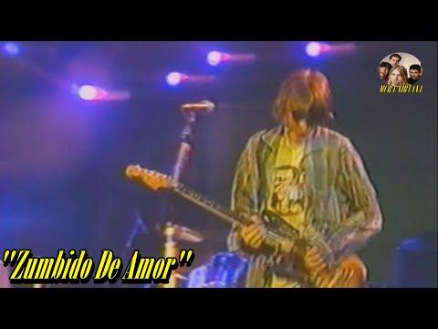 Nirvana - Love Buzz [Legendado PT] Live Rio de Janeiro, BR