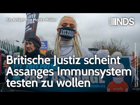 Britische Justiz scheint Assanges Immunsystem testen zu wollen | Moritz Müller | NDS | 30.03.2020