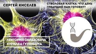 Сергей Киселев - Стволовые клетки и их применение