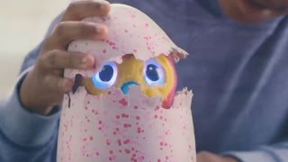Parents Claims Children's Hatchimals Are Speaking Their Own X-Rated Language
