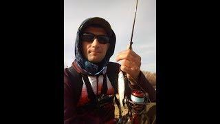 Уклейка,окунь,плотва на мормышку в конце октября. Вторая рыбалка с Fario NT Morm. S.