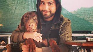 Profesyonel Köpek Eğitmeni Murat GÜNGÖR