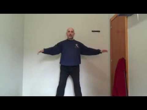 Alessandro corbeta principis de qi gong