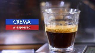 Czym jest crema na espresso? Czy świadczy o jakości kawy? Czajnikowy.pl