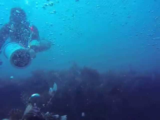 Lionfish Kills Spear Hunting Panama Video 2