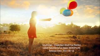 Soulforge - Dreamfast (Matt Fax Remix)