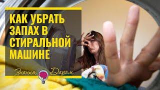 видео Запах в посудомоечной машине: причины и методы устранения