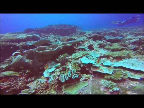 Sunken island with Sea Pearl Divers