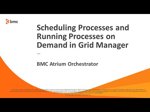 BAO Platform - Scheduling Processes and Running Processes on Demand in Grid Manager