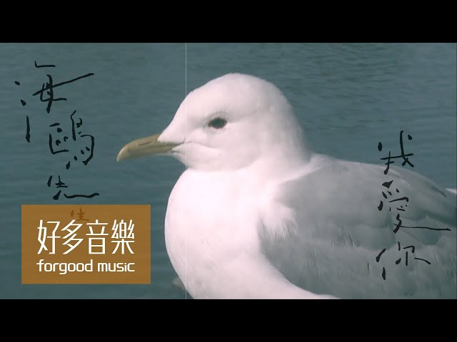 魏如萱 waa wei [ 海鷗先生我愛你 Mr. Seagull, I Love You ] Official Lyric Video