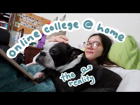 what online college at home is really like