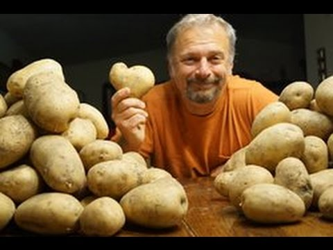 Podcast #3 - Tim Steele Talks The Potato Hack And His Book By No Other Name - Weight Loss Simplified