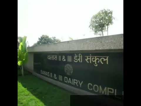 Amul Dairy in super factories.... Must watch