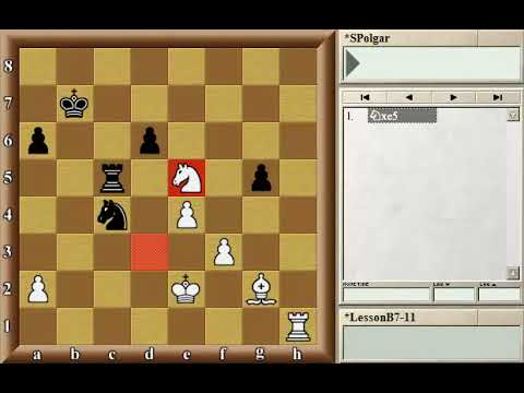 The relative value of all the pieces - GM Susan Polgar [Polgar Chess University]