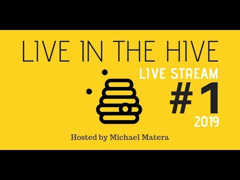 LIVE HIVE! Open Chat... Let's Buzz In And Talk!