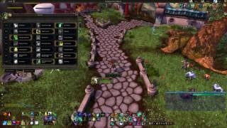 Windwalker Monk PvE DPS Guide 7.1