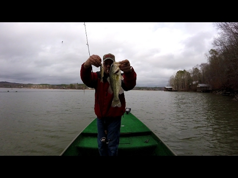 Bass Fishing With Live Minnows - Lake Weiss